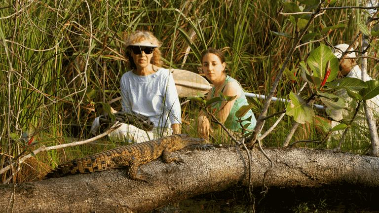 Kosi Bay_Roger de la Harpe_Kosi Forest Lodge_croc-min