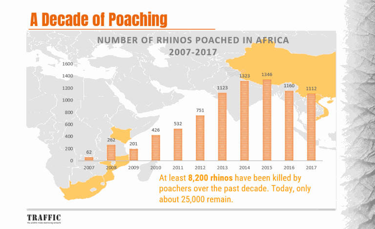 Poaching stats Africa