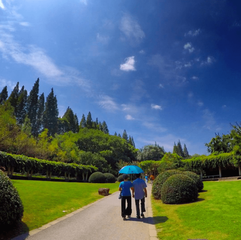 Weekend park stroll