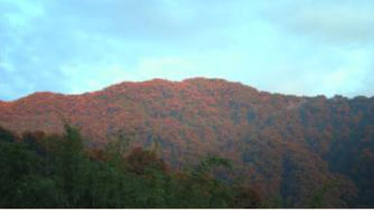 Neora Valley National Park