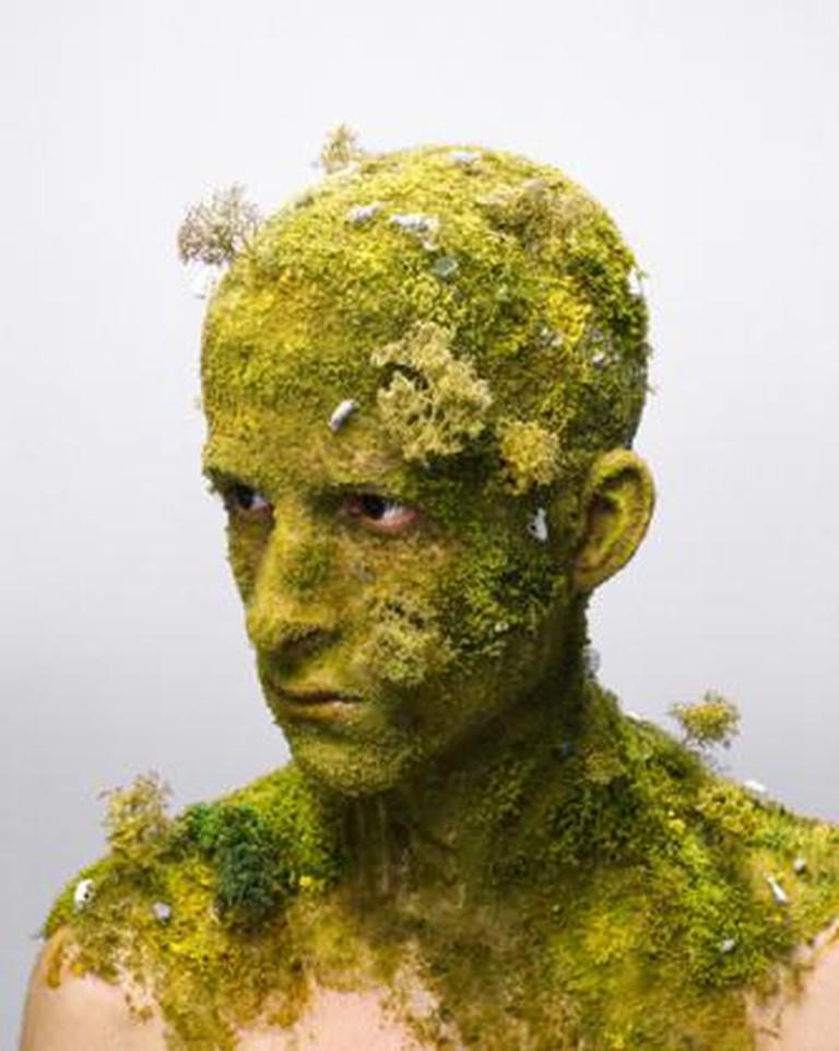 Levi van Veluw, 'Landscape I', 2008
