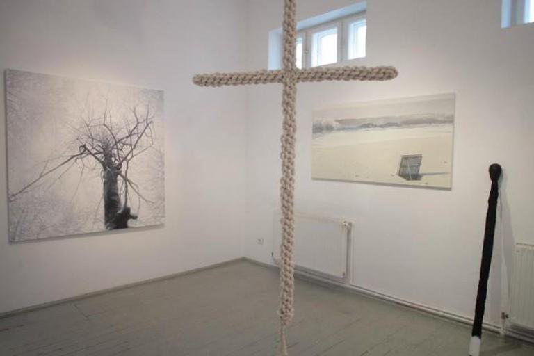 Anca Poterasu Gallery