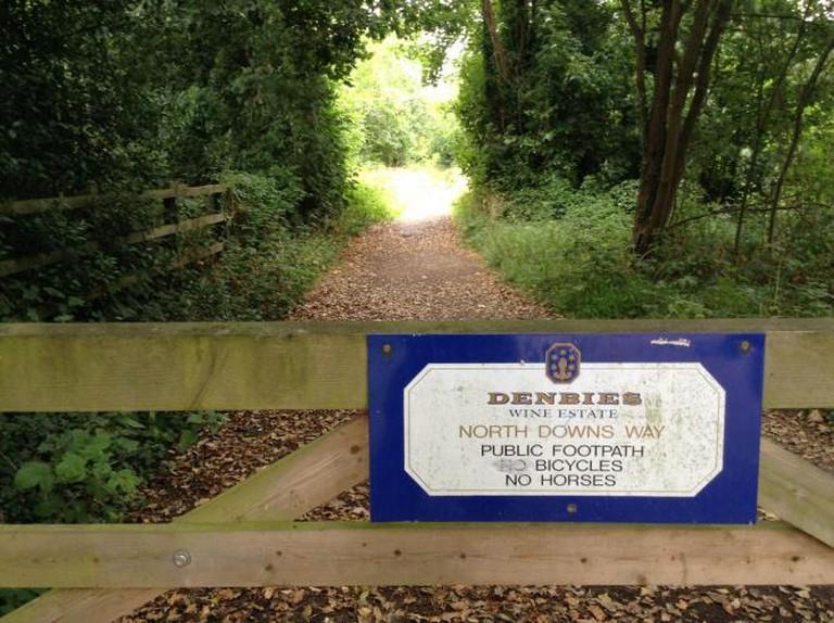 Denbies Wine Estate Way