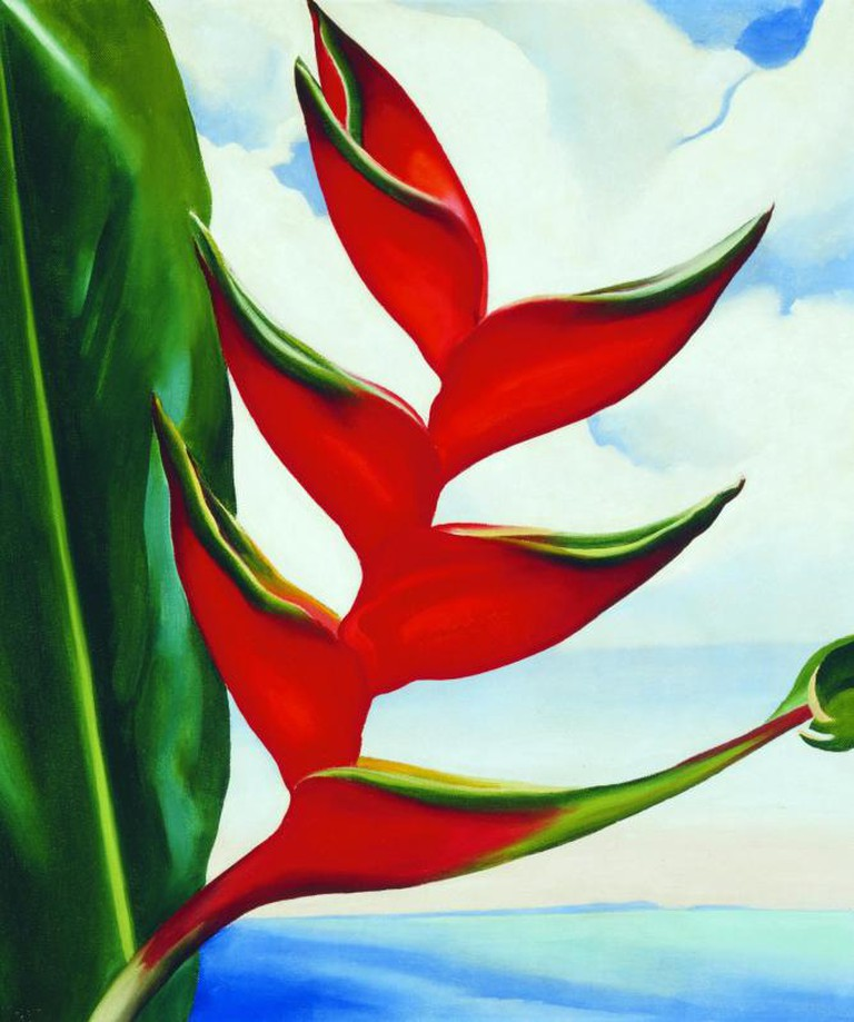 Georgia O'Keeffe, Heliconia – Crab Claw, 1939, 19 x 16 in., Collection of Sharon and Thurston Twigg- Smith, Image courtesy of the Honolulu Museum of Art