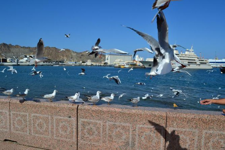 Muscat/Muttrah Port View