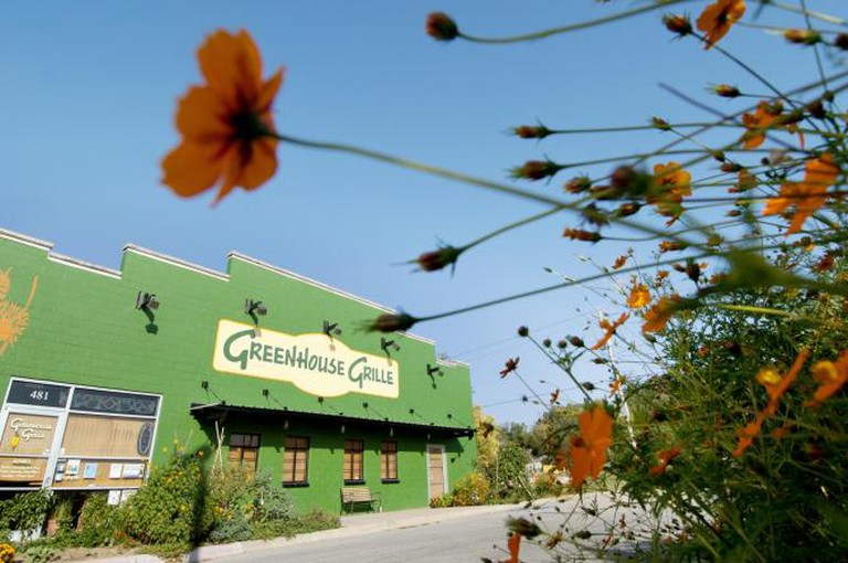 greenhouse grille