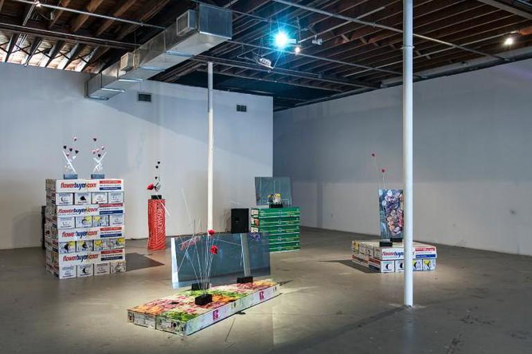 Virgina Pundstone BOG-MIA I Courtesy Locust Projects