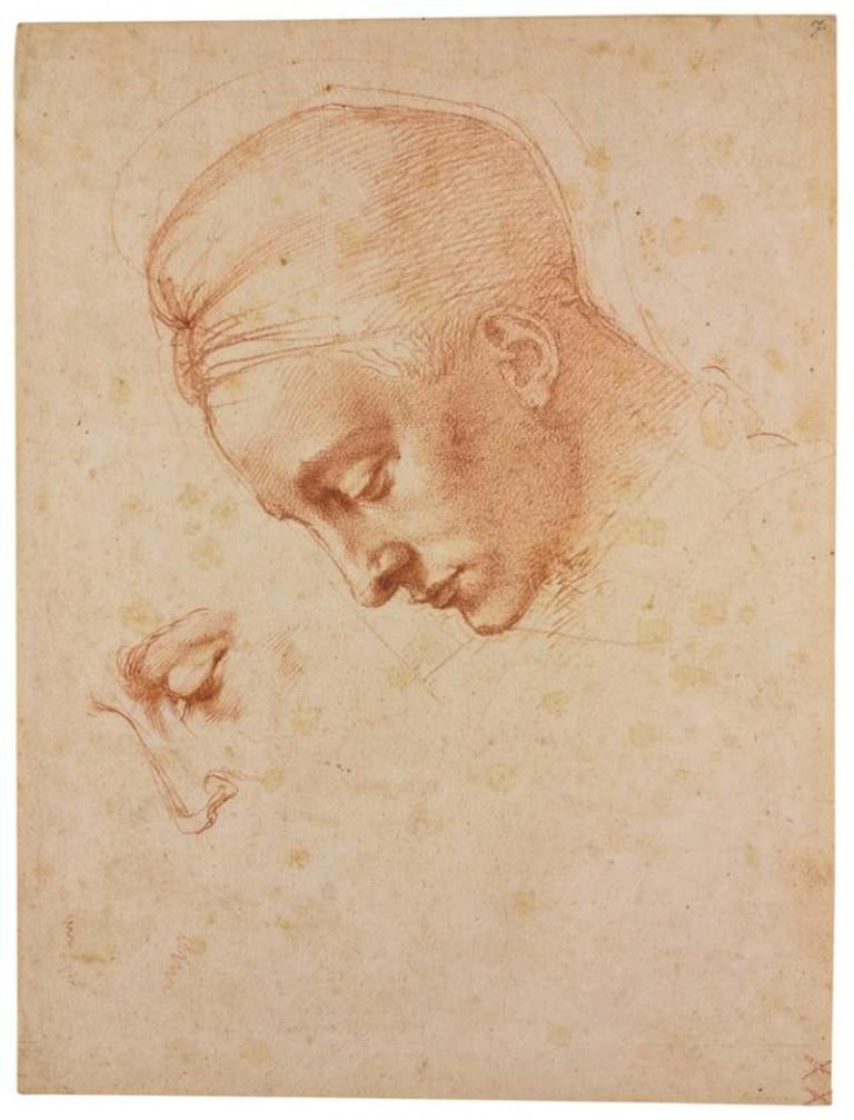 "Michelangelo, Studies for ""Leda""'s head, 1530 ca., red stone on paper; mm 355 x 269, Firenze, Casa Buonarroti, inv. 7 F | Courtesy Zetema"