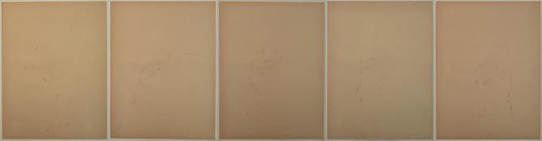 Lala Rukh, Untitled, conte on paper, Grey Noise, 1983 – 1985