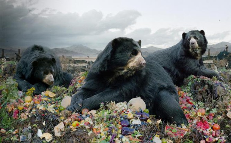 Simen Johan From the series Until the Kingdom Comes Untitled #152, 2008 Digital C-print © Simen Johan, Courtesy Yossi Milo Gallery, New York