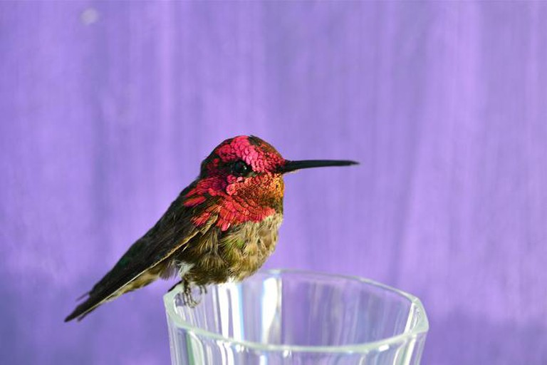 You think this is just a coincidence, 2014, 