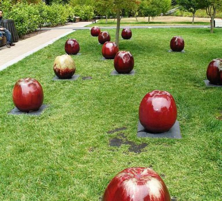 de Young Apple | © WikiCommons