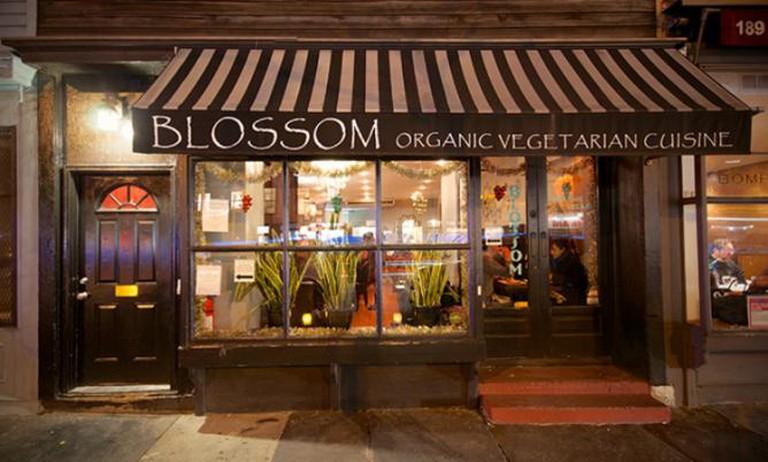Blossom Chelsea Exterior   Image Courtesy of Blossom