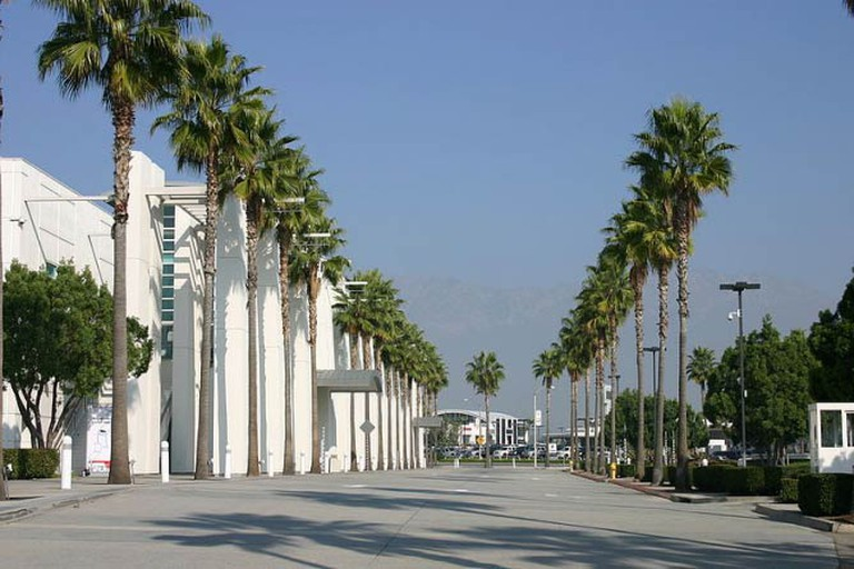 Palm Trees at the Ontario Convention Centre