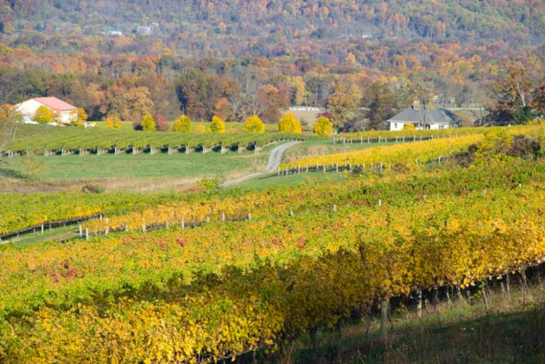 Breaux Vineyards in Virginia   © LAmeetDC/Flickr