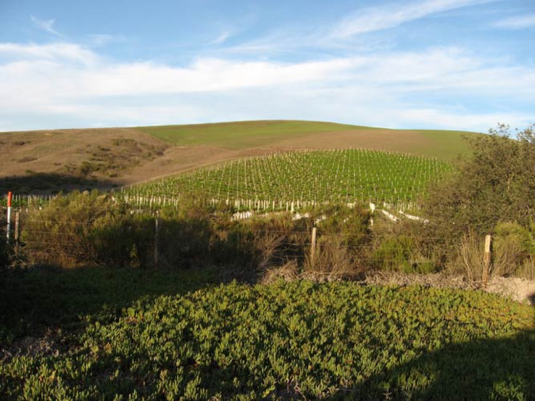 Santa Barbara Wine Country | © Ken Lund/Flickr