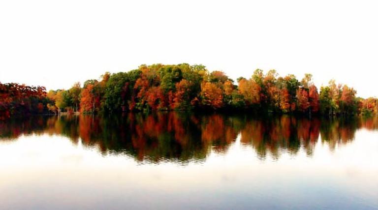 North Carolina reflections | © Kalasoft/pixabay