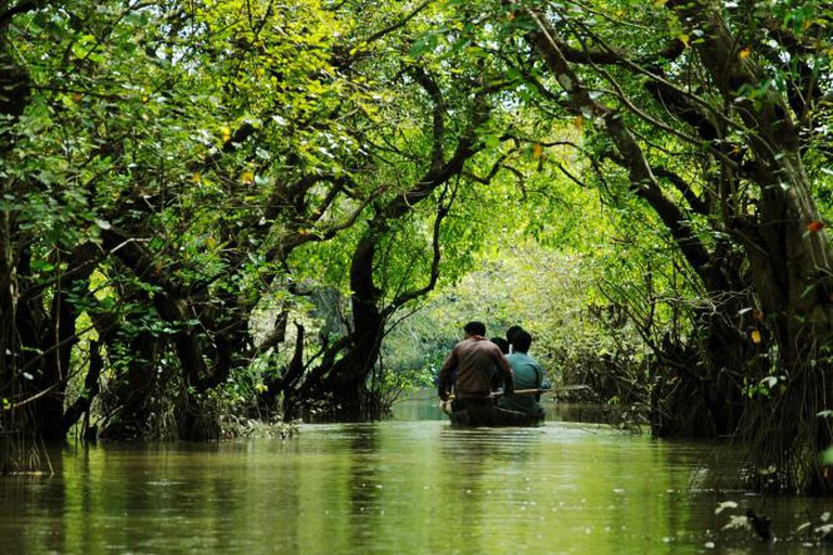 Ratargul Swamp Forest | © WikiCommons