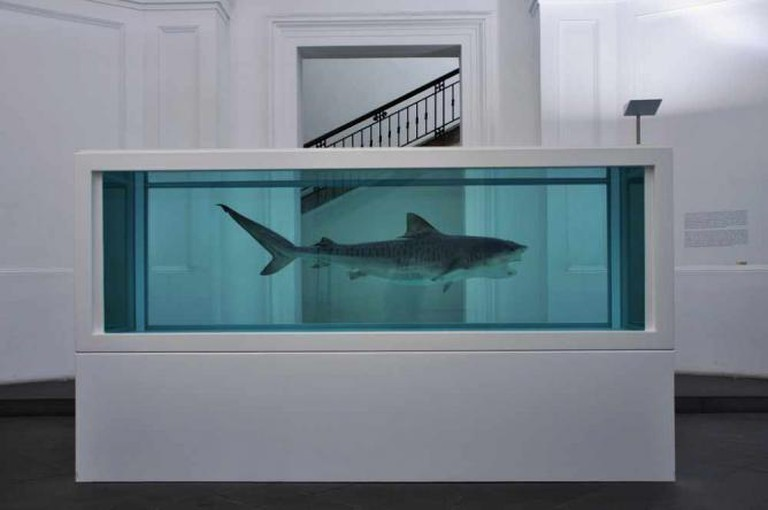 'The Physical Impossibility of Death in the Mind of Someone Living' (1991) by Damien Hirst | © Massimo Carelli/Flickr