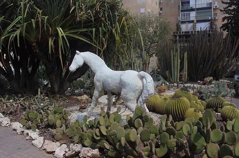 Holon Cactus Park © Jael Ancker