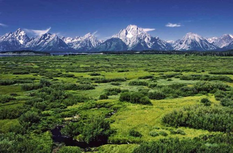 Willow Flats in the Grand Teton National Park | © Michael Gäbler/WikiCommons