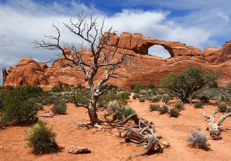 The Skyline Arch at Arches National Park | © Sanjay Acharya/WikiCommons