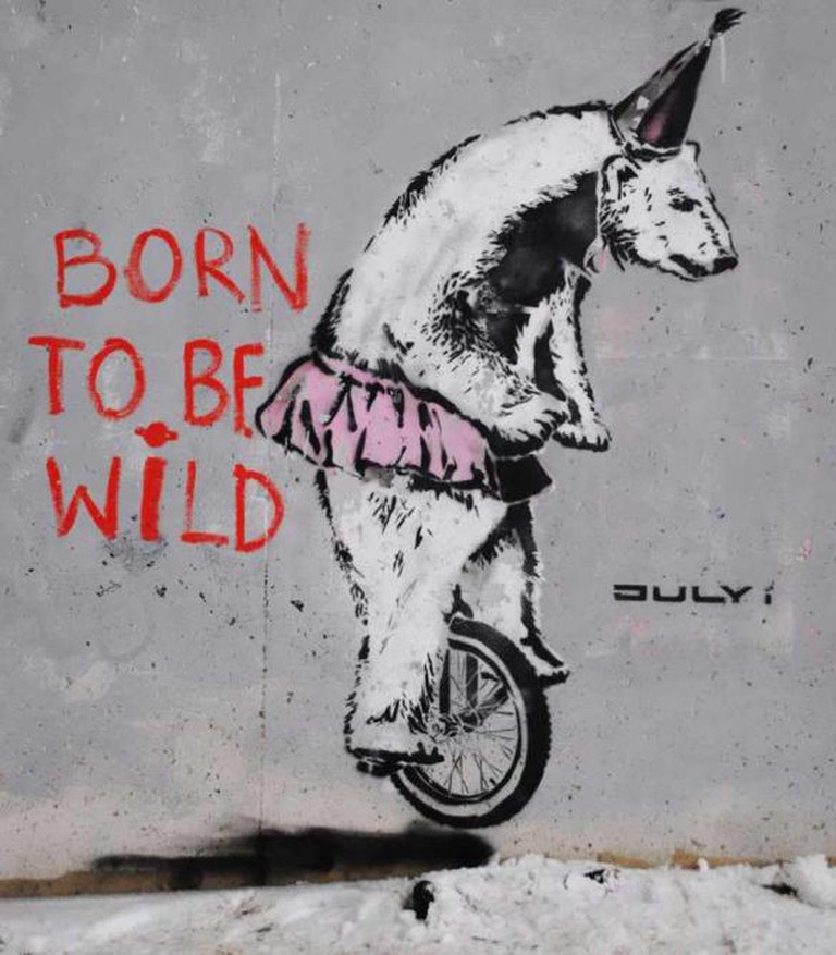 'Born to be Wild' by July i | © TheMindUnleased/Flickr