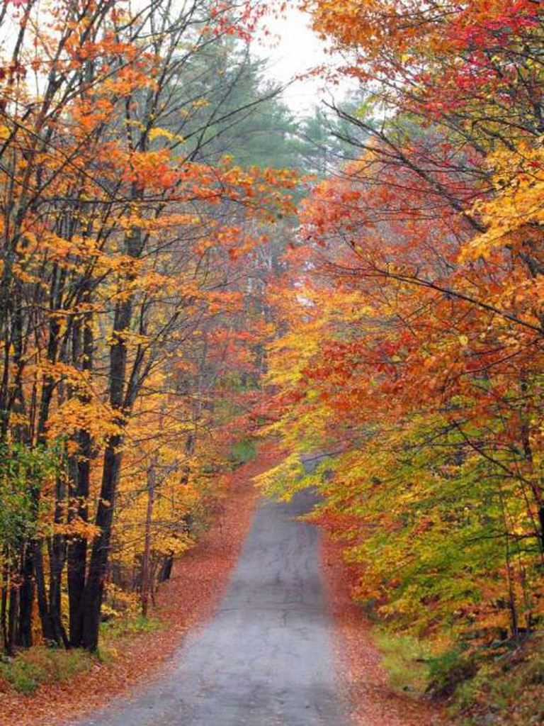 Beautiful fall colors in Jackson | Courtesy of Jackson, New Hampshire Chamber of Commerce