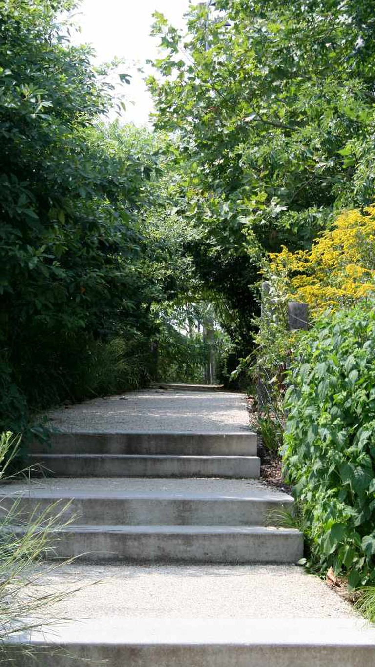 Green trees, path and steps at Brooklyn Bridge Park/