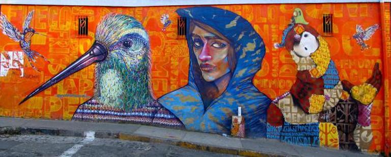 Zorzal Mujer Muñeco © La Mala Testa/Flickr