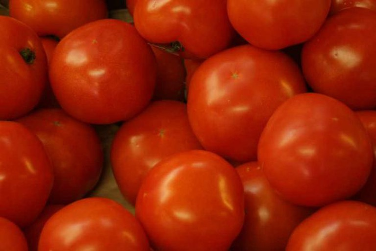 Tomatoes | © CoreyBurger/Flickr