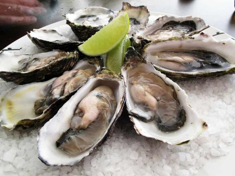Oysters | © Guido/WikiCommons