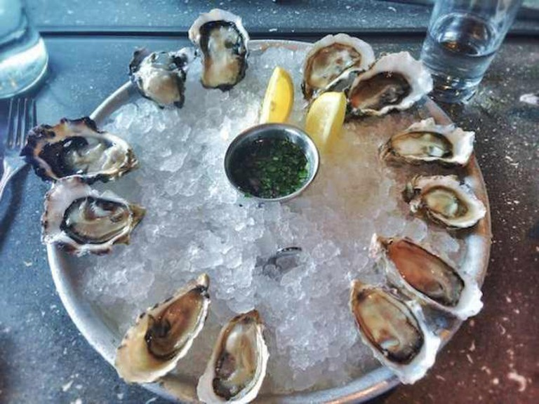 Fresh Array of Oysters