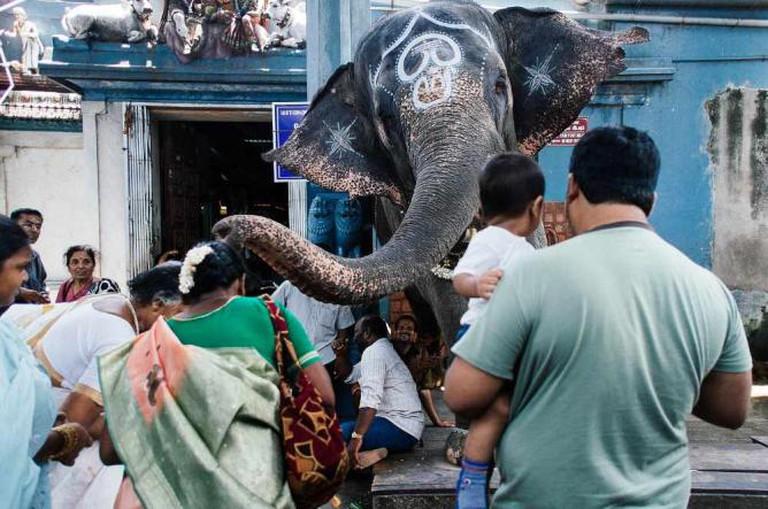 Sri Manakula Vinayanagar Temple | © Mat McDermott /Flickr
