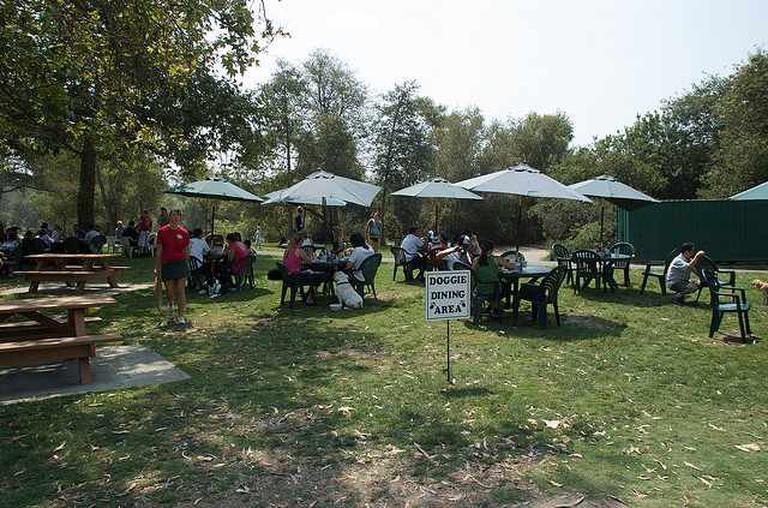 Park Bench Café doggie dining area | © Orlando Cordero/Flickr