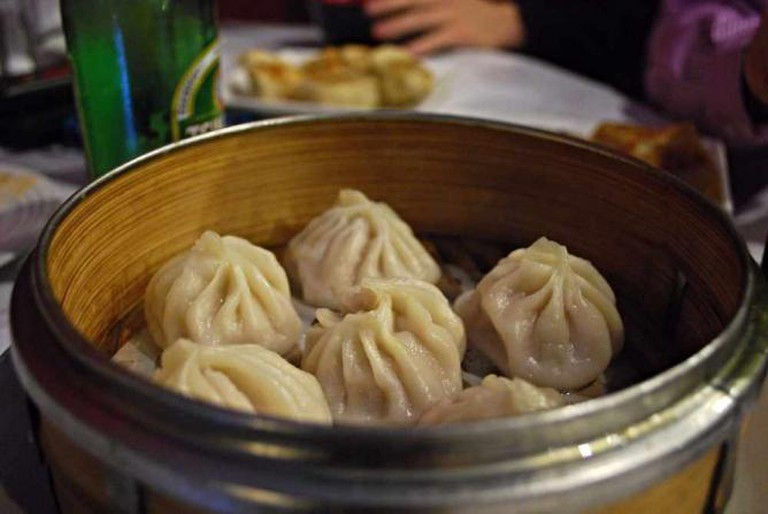 Juicy Pork Dumplings