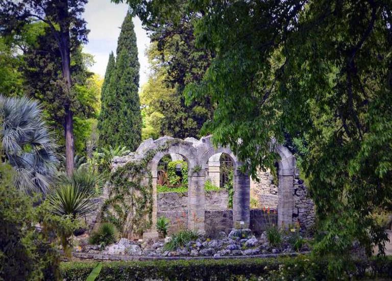 Jardin des Plantes | ©GwendolynStansbury/Flickr