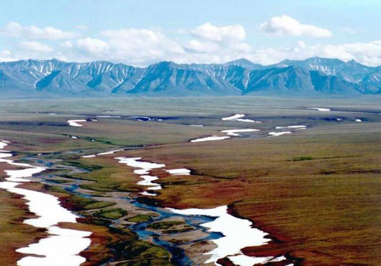Arctic Coastal Plains
