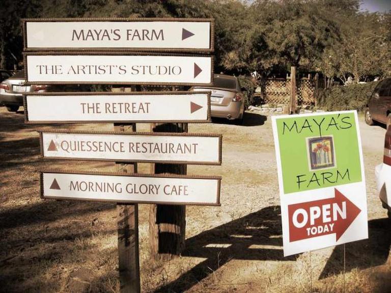 Garden Signs in Farm at South Mountain /
