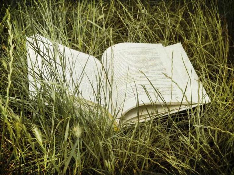 Summer Reading | © Florin Gorgan/ Flickr
