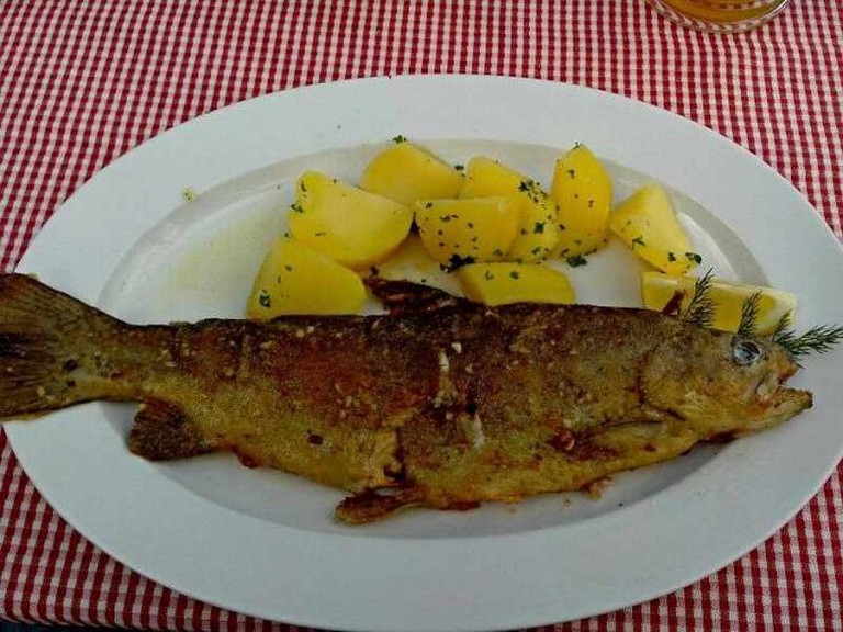 Trout with potatoes at Bräu-Gasthof Hallstatt