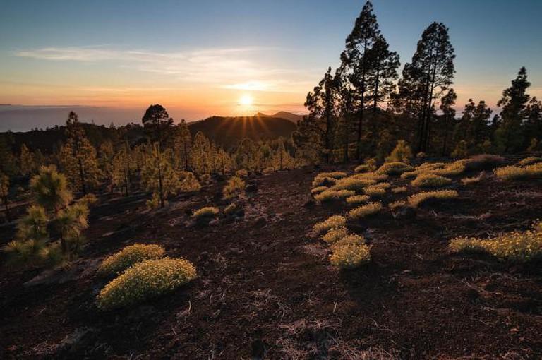 Teide National Park by Raico Bernardino Rosenberg/Flickr