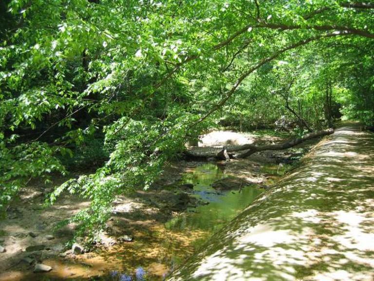 Stream in Glover-Archbold Park   ©Matthew Buckley/Flickr