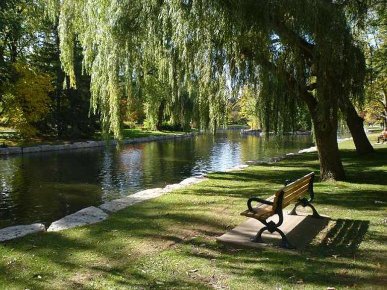 Victoria Park bench