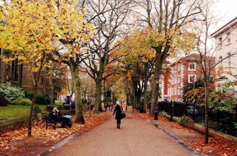 New Walk, Leicester | © DncnH/Flickr