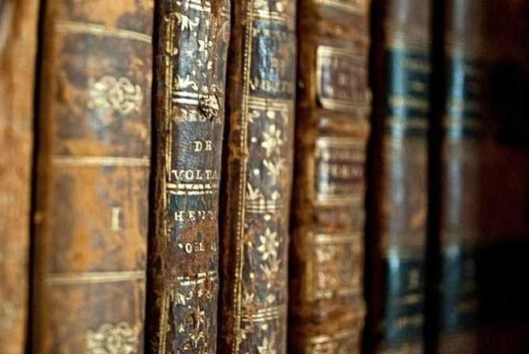 Voltaire | © Simon Bonaventure/Flickr
