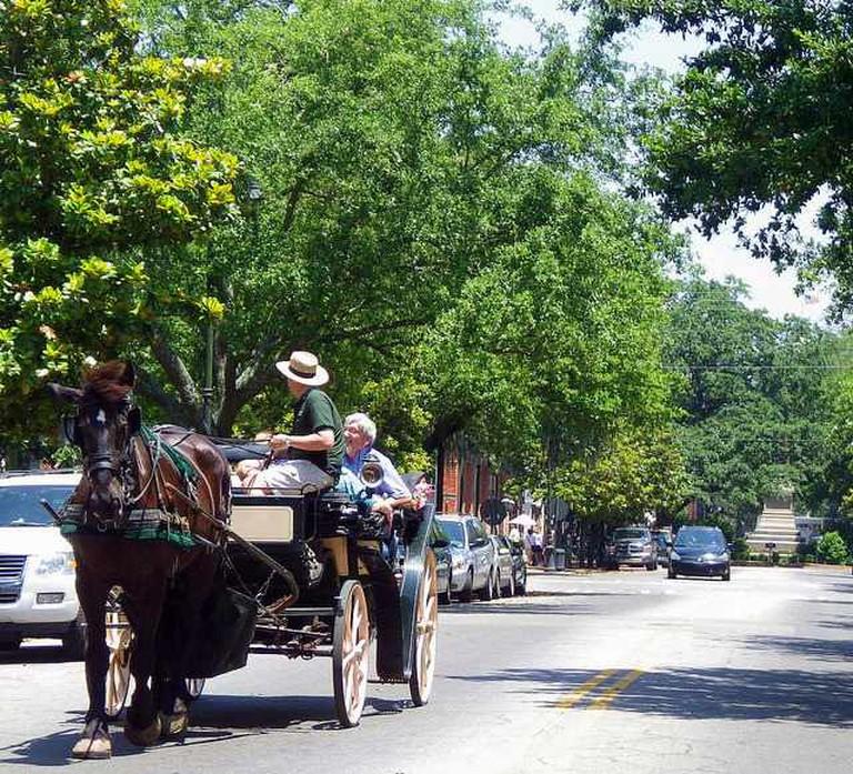 Carriage Tours of Savannah | © BEV Norton/Flickr