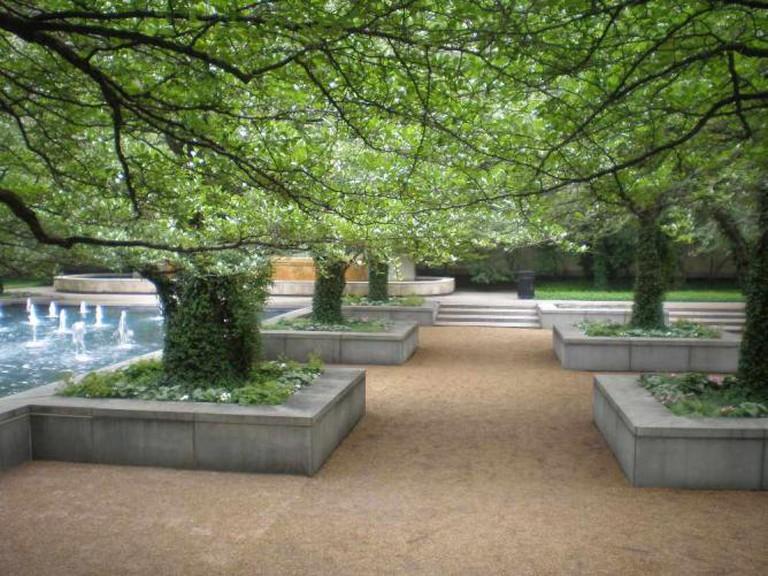 Art Institute South Garden