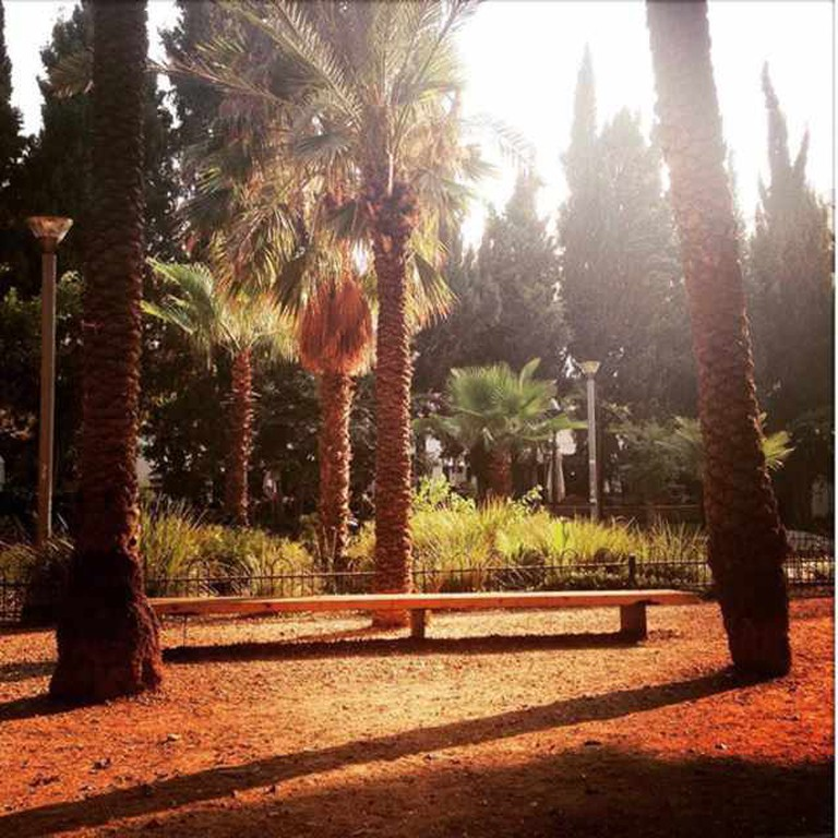 Meir Park I © Pia Staigmueller