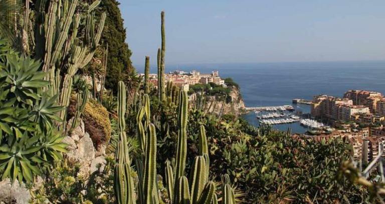 Monaco Exotic Garden | © Studio-D/Flickr